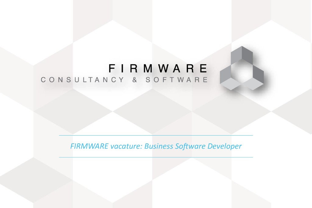 Business Software Developer
